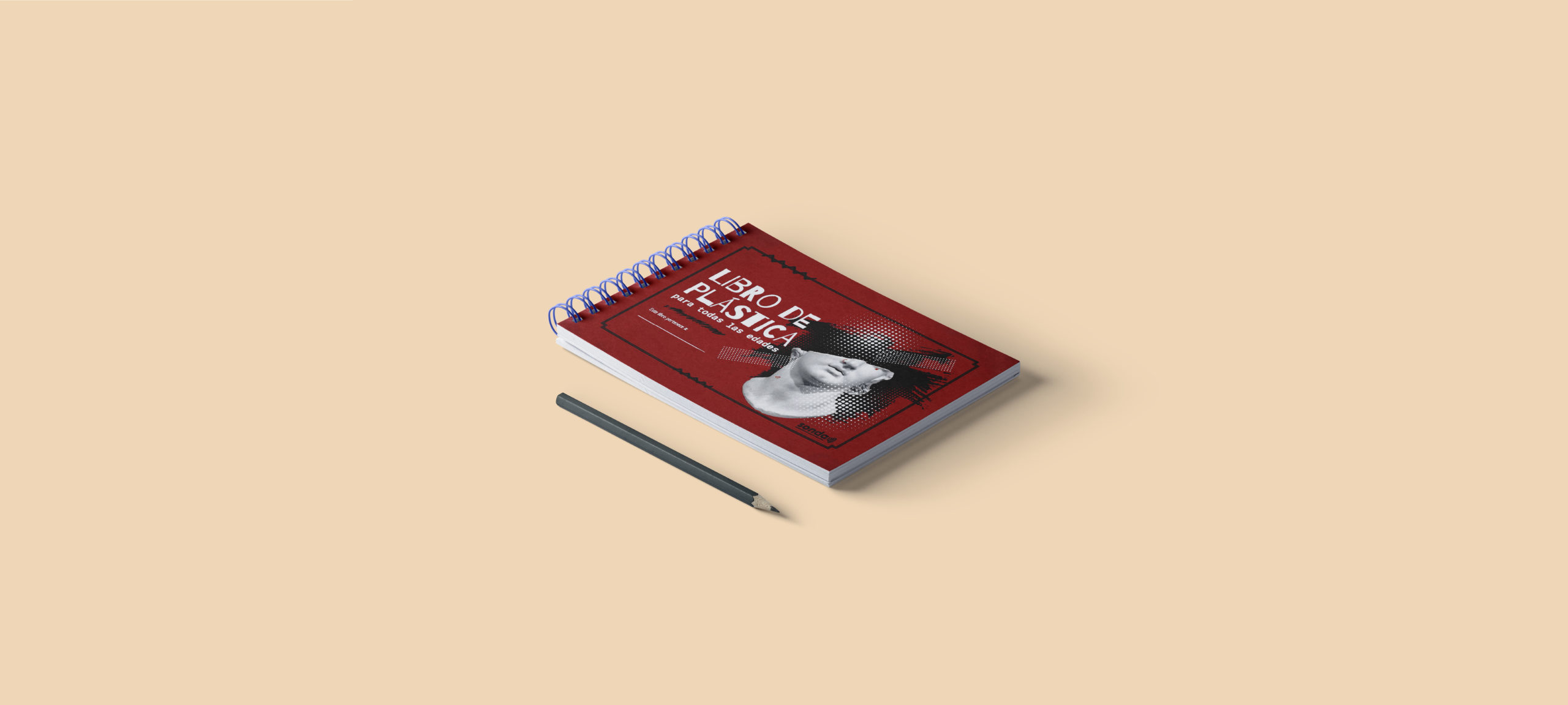 Libro de Plástica para Todas las Edades